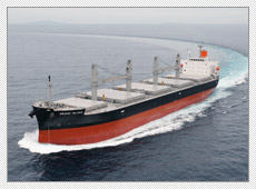 Semi Open Type Bulk Carrier