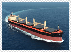 Handymax Bulk Carrier