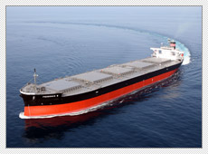 Over Panamax Bulk Carrier